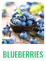 Wildology Blueberries
