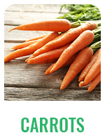 Wildology Carrots