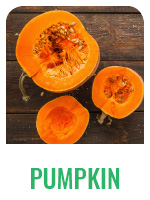 Wildology Superfood Pumpkin