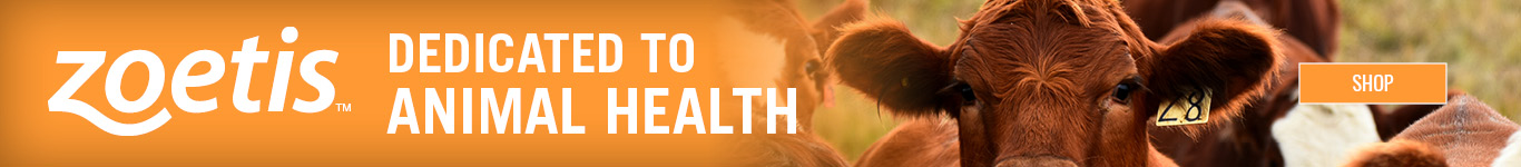 Zoetis dedicated to animal health
