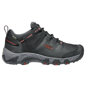 Men's  Steens Waterproof Shoe