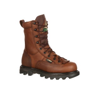 Men's  BearClaw 3D Insulated GORE-TEX Outdoor Boot