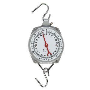 E-Z Hanging Scale - 110 lbs/50 kg