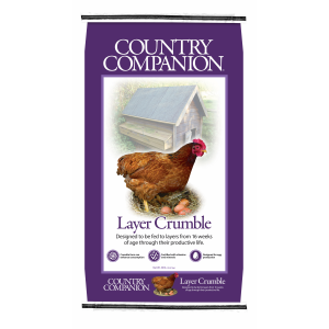 16% Layer Crumble Poultry Feed