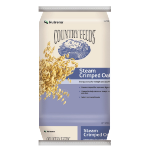 Steam Crimped Oats