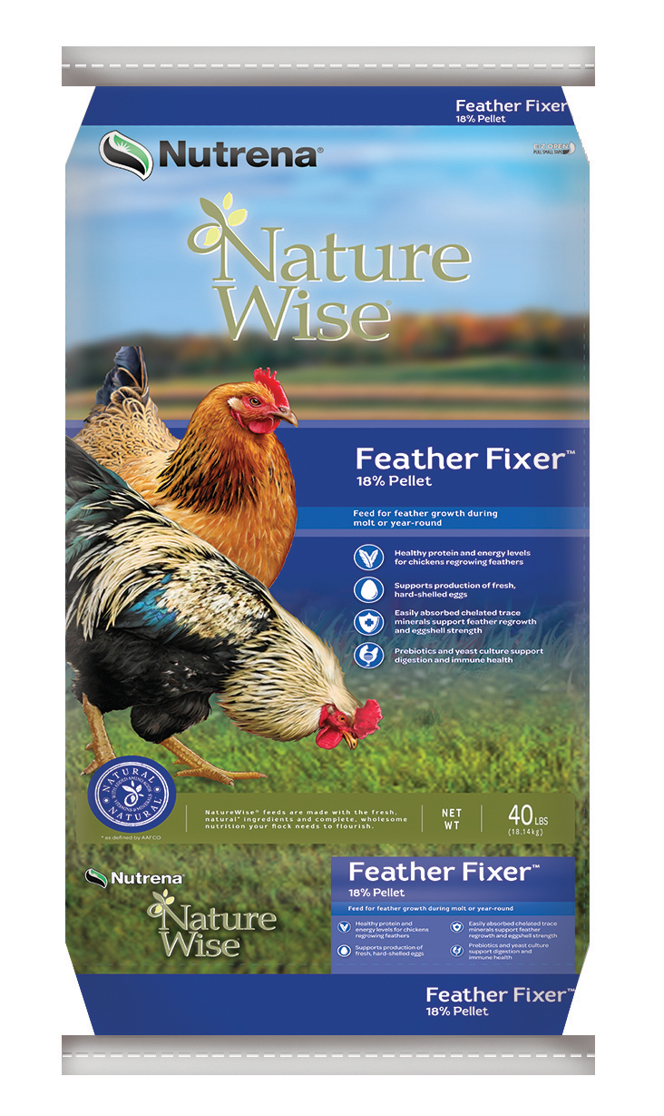 Feather Fixer feed