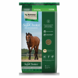 Maintenance Horse Feed
