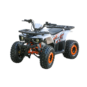 125cc Youth Utility ATV