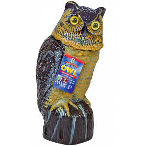 Garden Defense Action Owl
