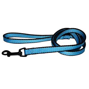 Neon Nylon Dog Leash with Swivel Snap and Loop