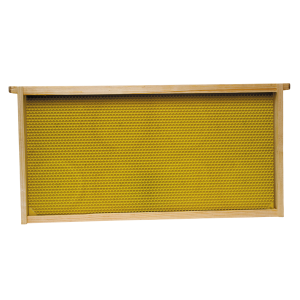 Deep Brood Frame with Plastic Foundation