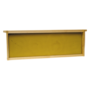 Medium Honey Super Frame with Plastic Foundation