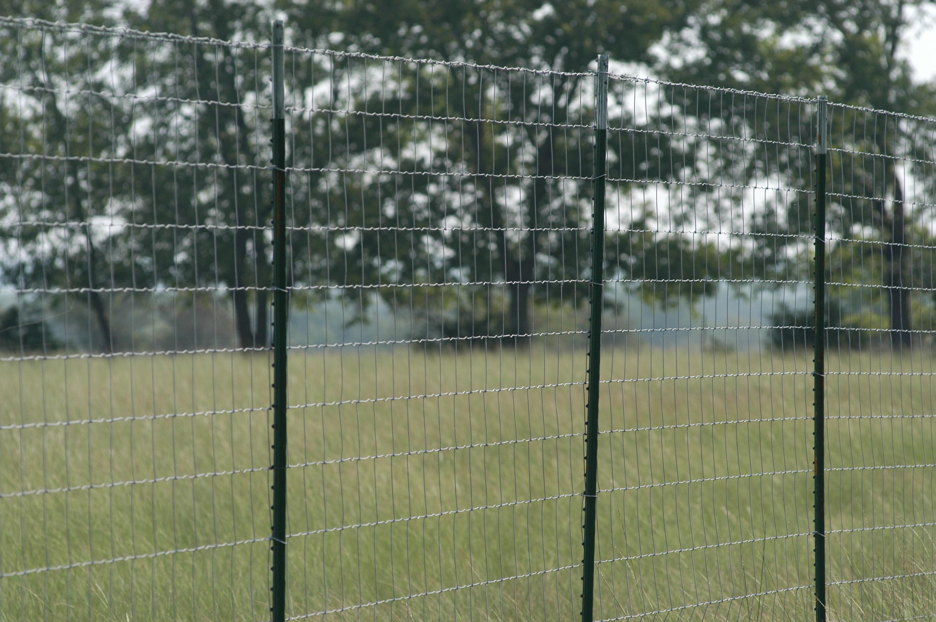 Premium Game Fence