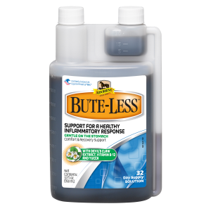 Bute-Less Horse Support Solution