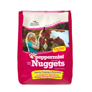 Peppermint Nuggets Horse Treats