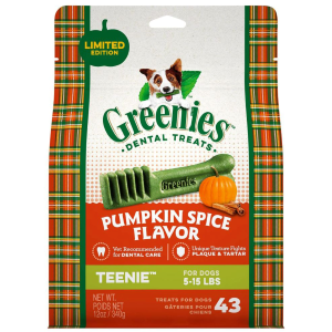 Pumpkin Spice Dental Treat - Teenie
