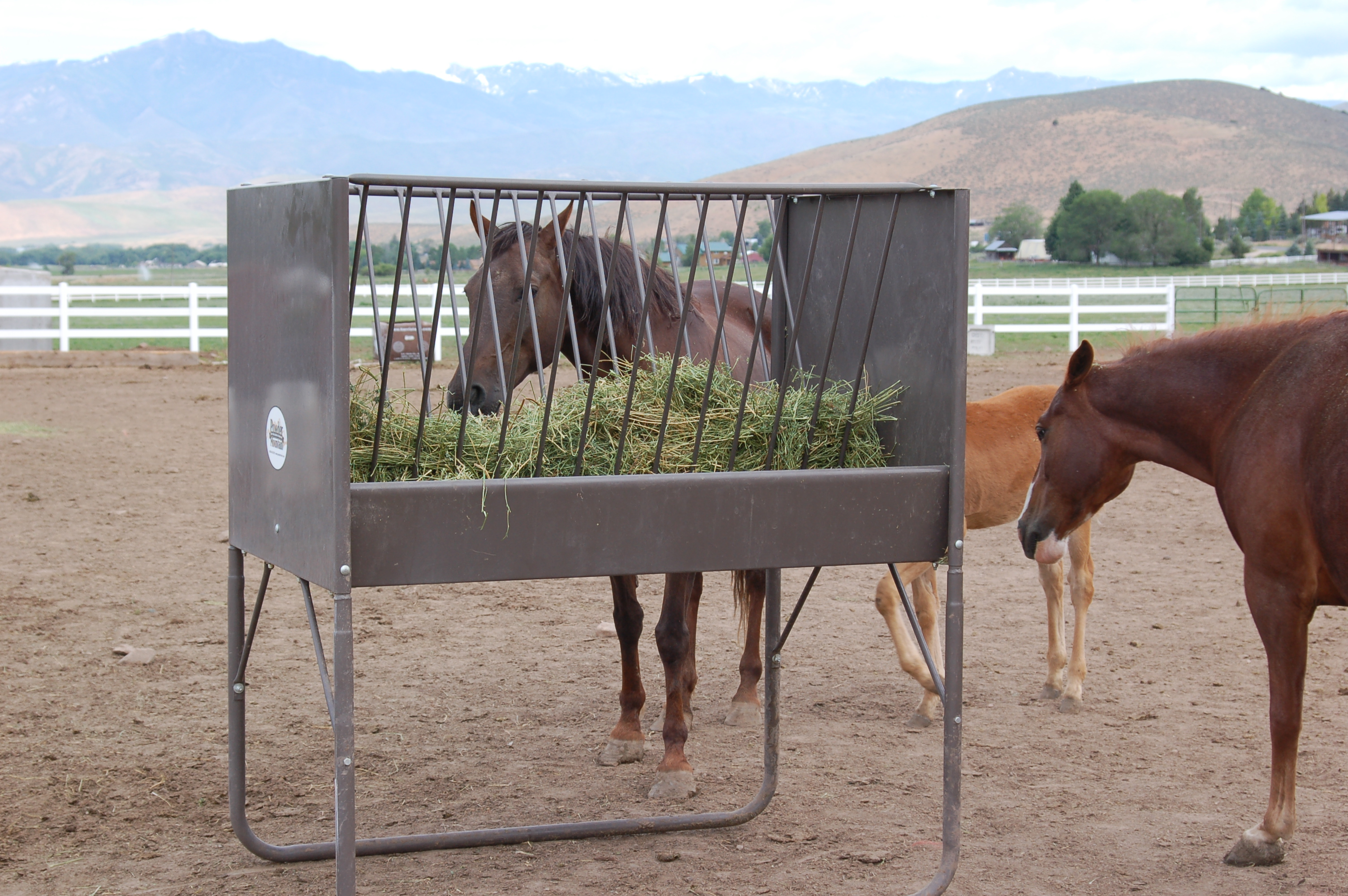 5-Foot V-Rack Horse Feeder