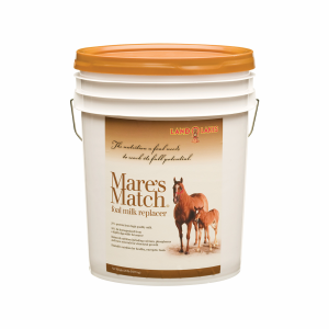 Mares Match Foal Milk Replacer