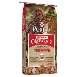 Layena Plus Omega-3 Sunfresh Recipe