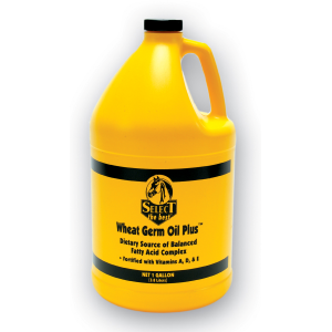 Wheat Germ Oil Plus Equine Supplement