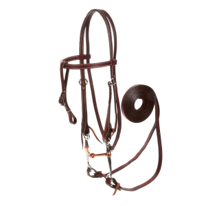 Bridle with Snaffle bit