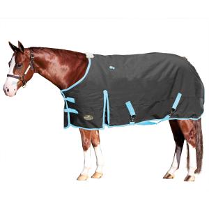 Equine | Murdoch's