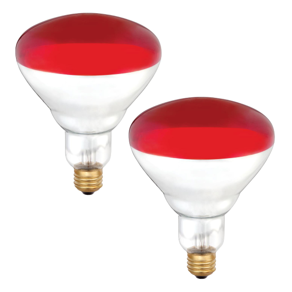250 Watt Red Heat Lamp Bulb - 2 Pack
