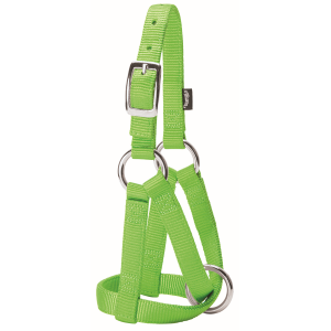 Goat Halter - Medium