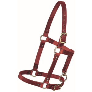 Riveted Horse Halter Yearling