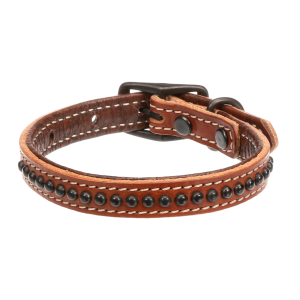 Outlaw Dog Collar