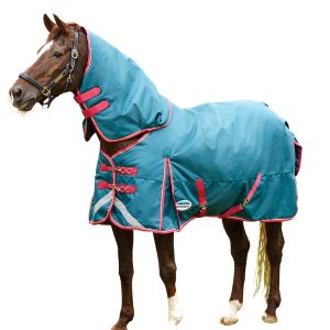 Comfitec Plus Dynamic Detach-a-Neck Medium Turnout Blanket