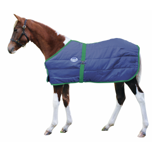 300D Growing Foal Blanket