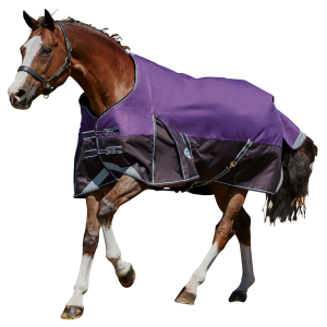 ComFiTec Plus Dynamic Standard Neck Medium Horse Blanket