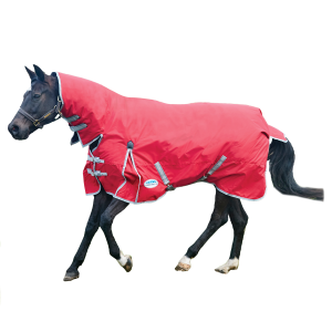 ComFiTec Classic Combo Neck Medium & Pony Medium Blanket