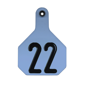 All American Large 4-Star #26-50 ID Tags