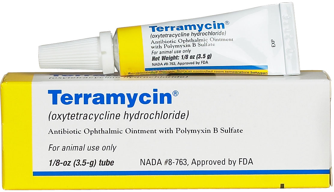 Murdoch S Zoetis Terramycin Ophthalmic Ointment For