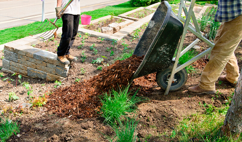 Why Mulch Matters