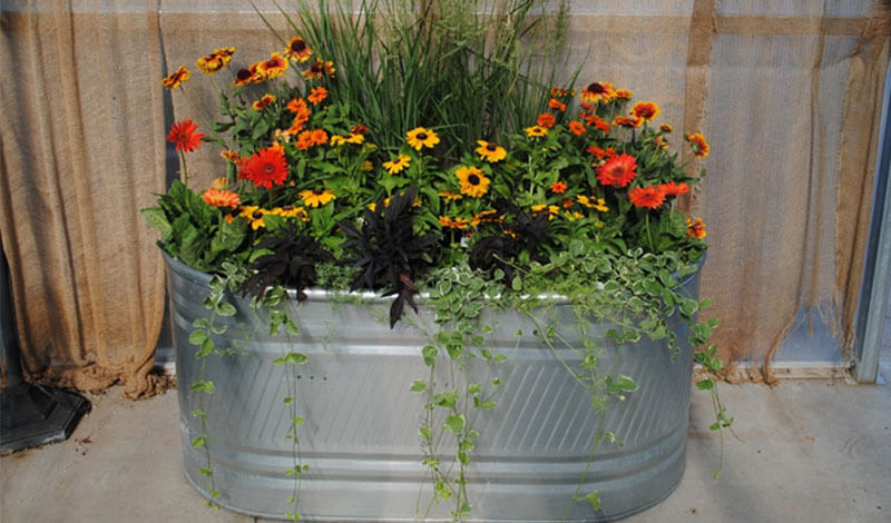 Create A Beautiful Stock Tank Planter