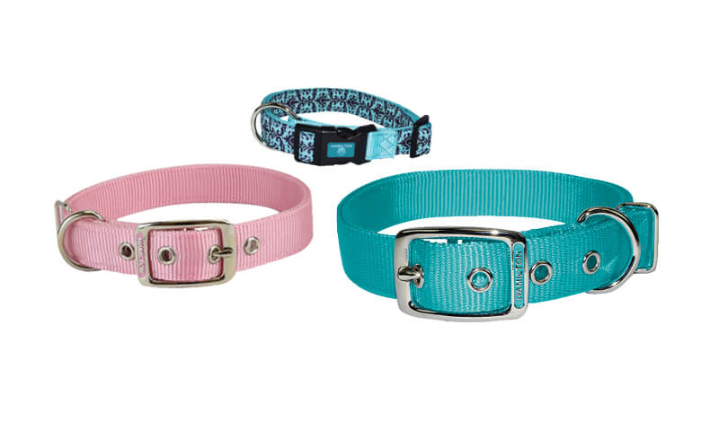Hamilton Collars, Leashes & Leads